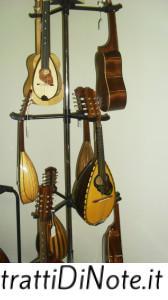 Un campionario di strumenti Musikalia