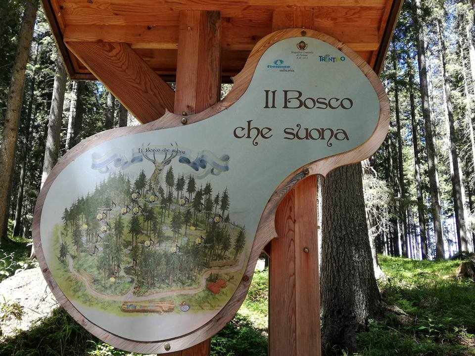 Il Bosco che Suona - Trentino