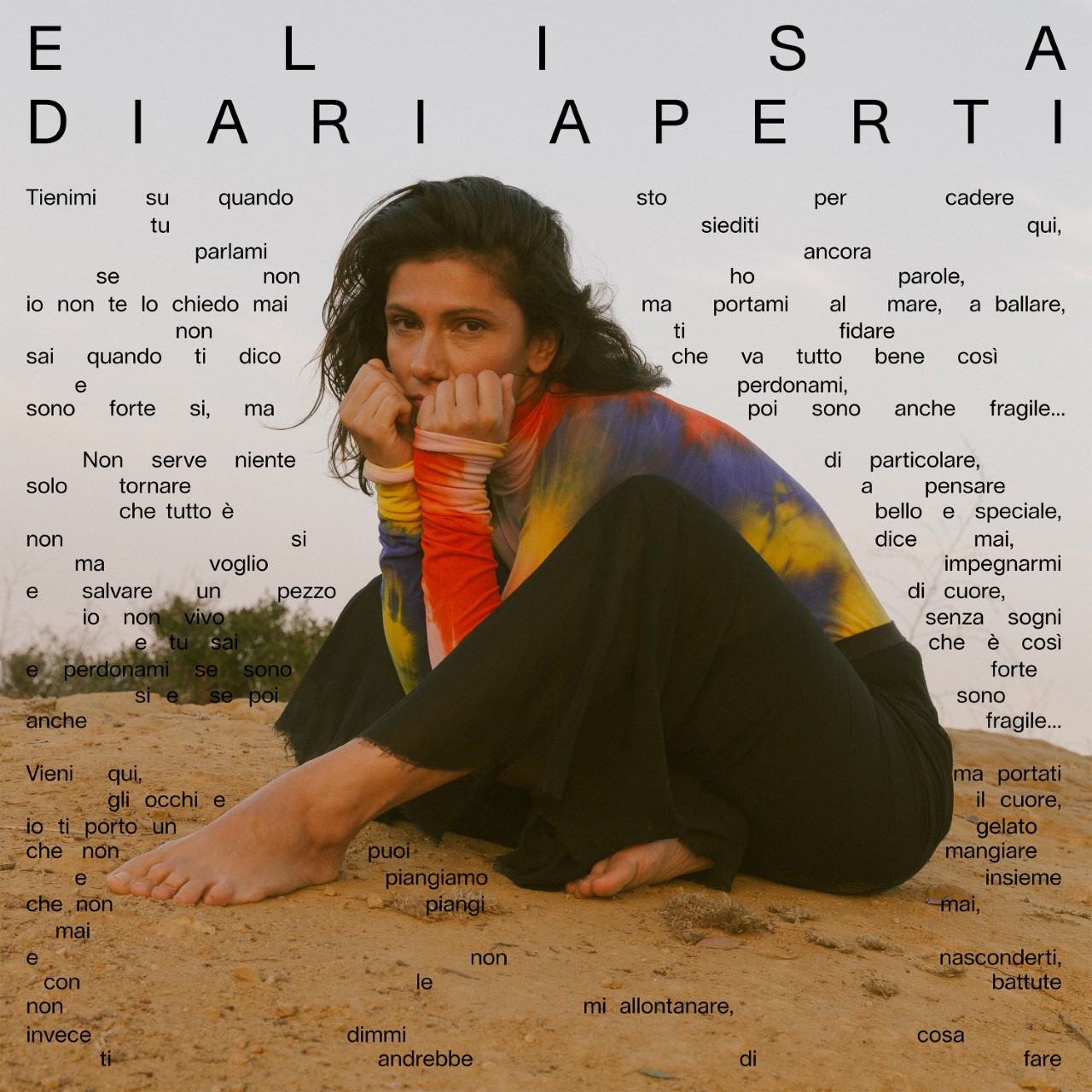 Elisa-DiariAperti
