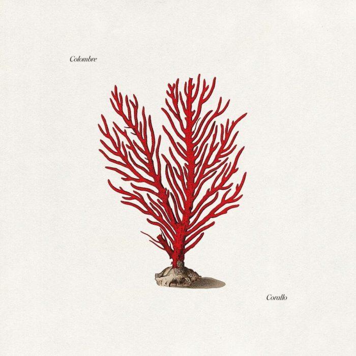 colombre-corallo